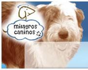 Milagros Caninos
