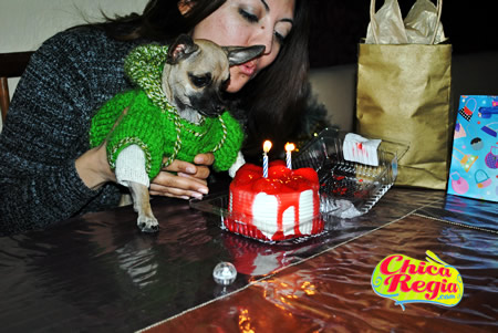 Cumpleaños segundo de mi mascota chihuahau  Pabo