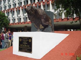 bisonte fcfm uanl mascota